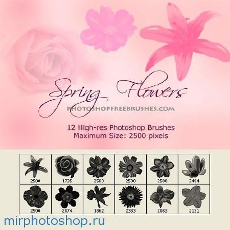 кисти для фотошопа из цветов