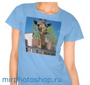 Бесплатный редактор фото на футболке