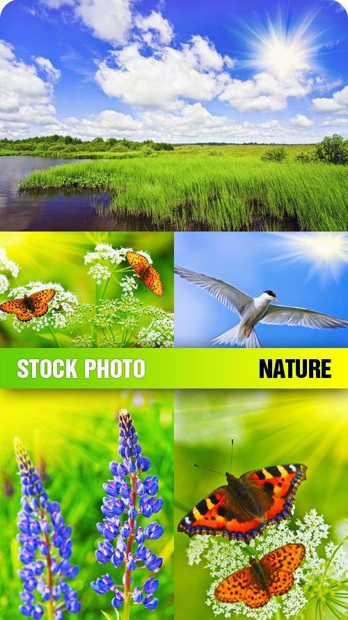 """Фотошоп шаблоны """"Природа"""" скачать бесплатно"""