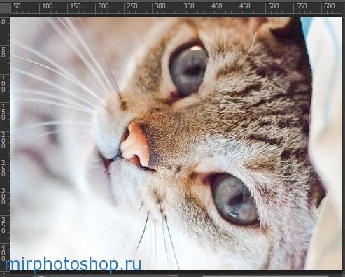 При повороте изображения на 90° по часовой стрелке и против часовой стрелки фотография