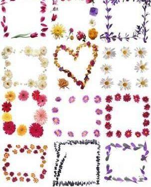 Фотошоп рамки из цветов скачать бесплатно